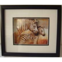 442  Falikép - zebrák-